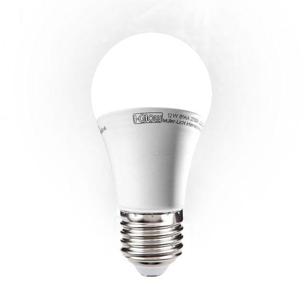 I-Glow LED Leuchtmittel, Birne, E27, 12 W